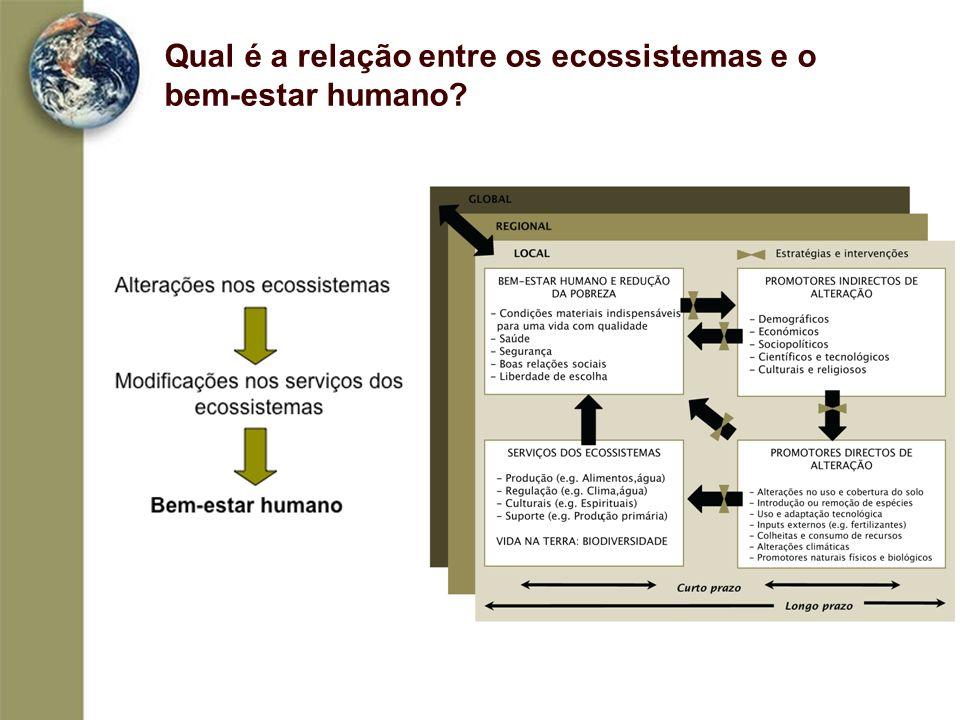 Que alterações sofreram os ecossistemas em Portugal.