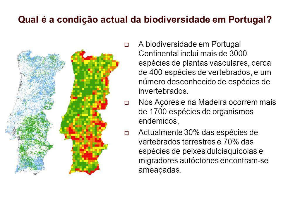 Qual é a condição actual da biodiversidade em Portugal? A biodiversidade em Portugal Continental inclui mais de 3000 espécies de plantas vasculares, c