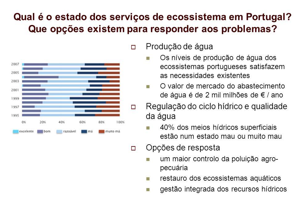 Qual é o estado dos serviços de ecossistema em Portugal? Que opções existem para responder aos problemas? Produção de água Os níveis de produção de ág
