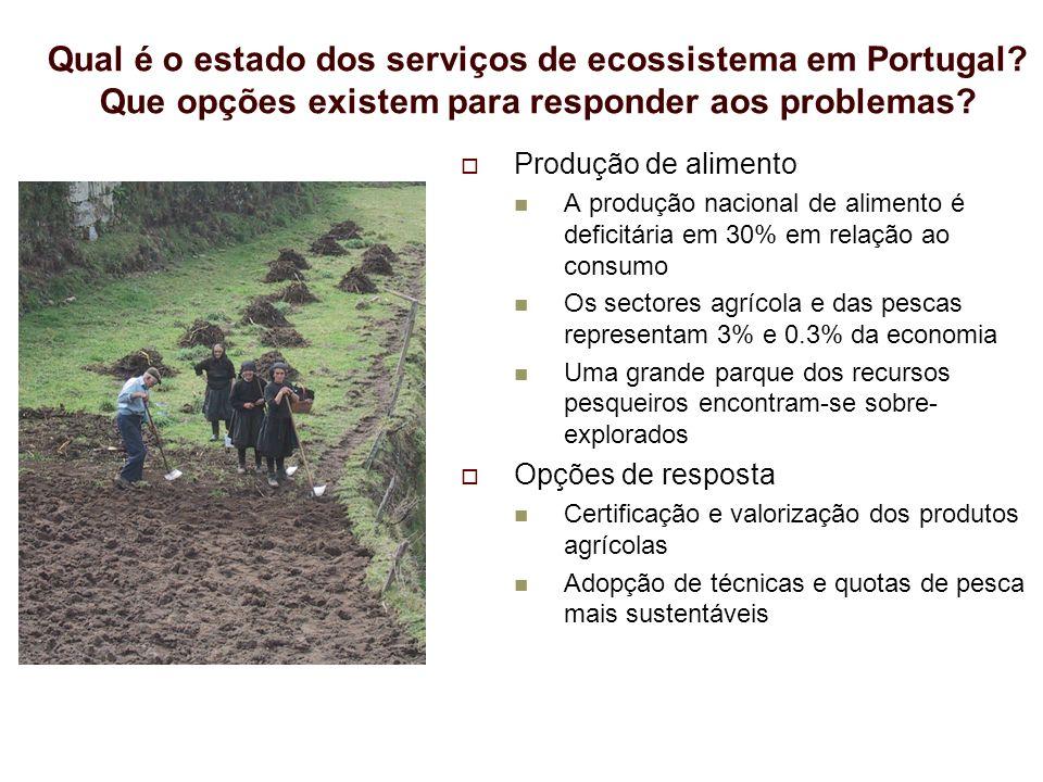 Produção de madeira e cortiça Portugal produz 54% da cortiça mundial O sector florestal é responsável por 10% das exportações nacionais e emprega 228 000 trabalhadores Os incêndios, o nemátode e a redução dos preços florestais são os principais problemas Sequestro de carbono A expansão da floresta tem favorecido o sequestro de carbono O montado sequestra até 5 t CO2/ha/ano e o pinhal até 32 t CO2/ha Opções de resposta Promoção de florestas multifuncionais de carvalhos O sequestro de carbono pode ser promovido nas áreas agrícolas Qual é o estado dos serviços de ecossistema em Portugal.