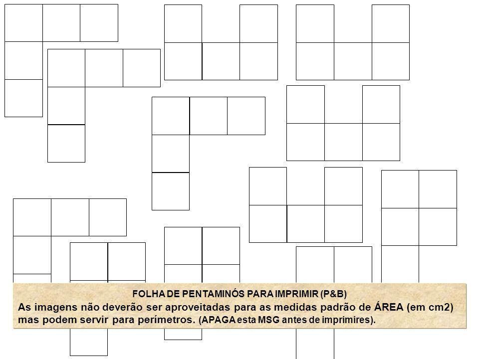 FOLHA DE PENTAMINÓS PARA IMPRIMIR (P&B) As imagens não deverão ser aproveitadas para as medidas padrão de ÁREA (em cm2) mas podem servir para perímetr