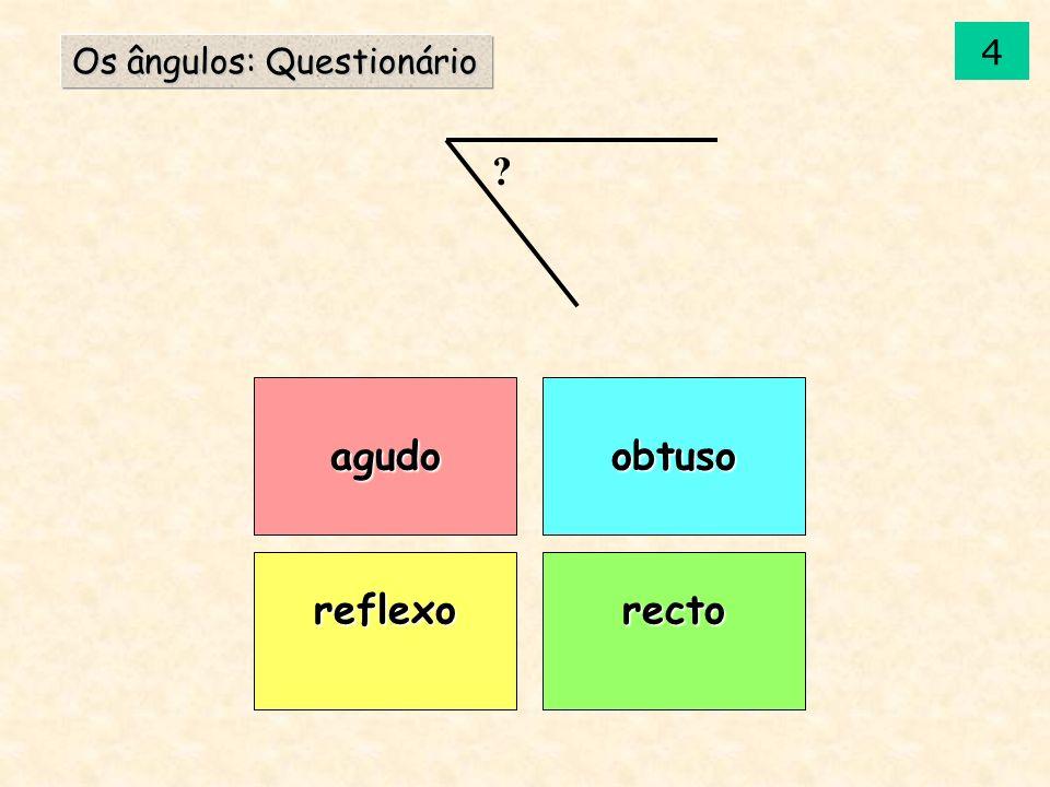 agudo reflexorecto obtuso Os ângulos: Questionário ? 14