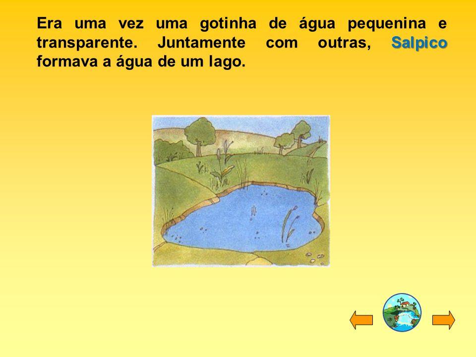 Salpico Era uma vez uma gotinha de água pequenina e transparente. Juntamente com outras, Salpico formava a água de um lago.