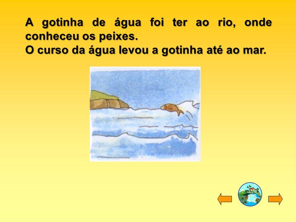 A gotinha de água foi ter ao rio, onde conheceu os peixes. O curso da água levou a gotinha até ao mar.