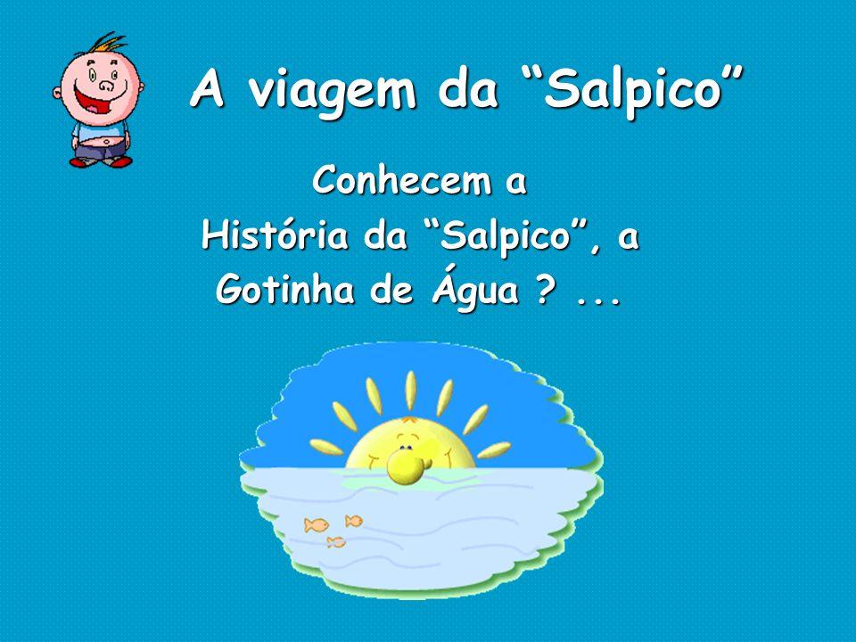 Conhecem a História da Salpico, a Gotinha de Água ?... A viagem da Salpico