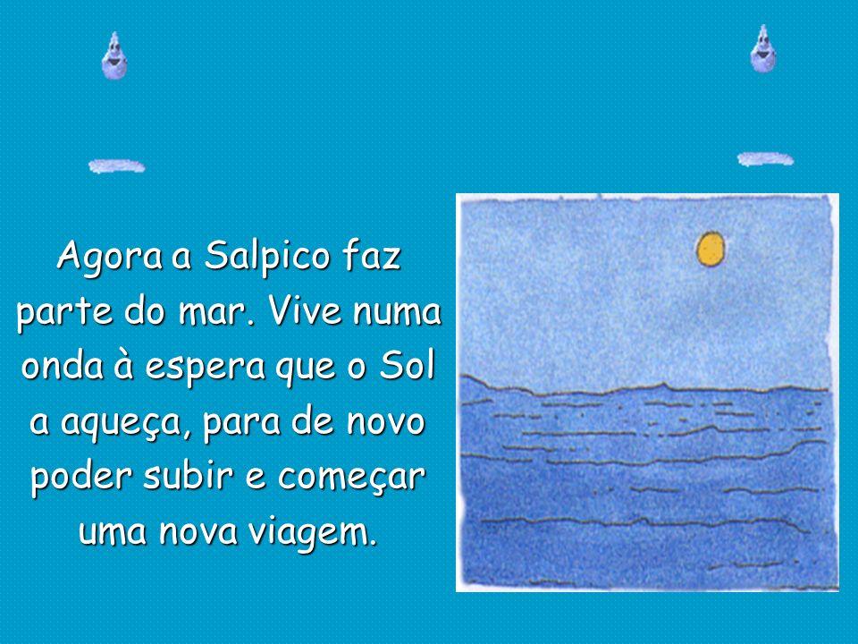 Agora a Salpico faz parte do mar. Vive numa onda à espera que o Sol a aqueça, para de novo poder subir e começar uma nova viagem.