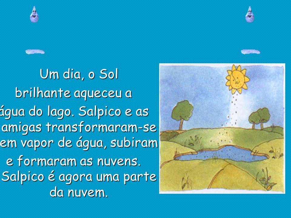 Um dia, o Sol brilhante aqueceu a água do lago. Salpico e as amigas transformaram-se em vapor de água, subiram e formaram as nuvens. Salpico é agora u