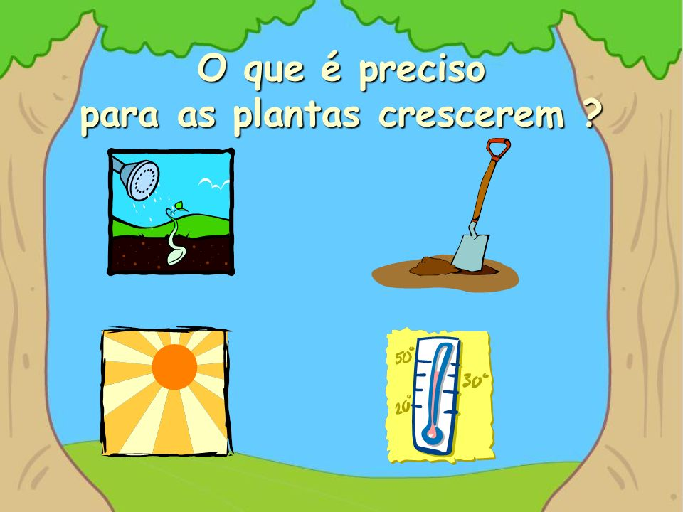FIM Tradução e adaptação por Professor Vaz Nunes (Ovar – Portugal) © Direitos reservados.