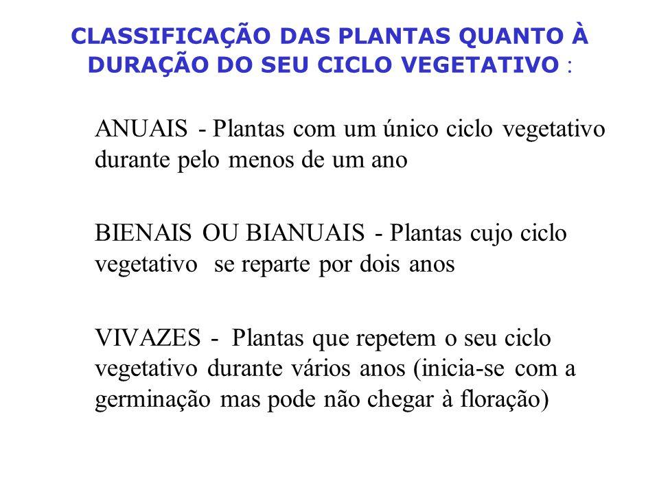 Inflorescência: - solitária (1 só flôr na extremidade do pedúnculo) - grupada: (várias flores num pedúnculo) - multiflora - pauciflora ou depaupurada - axilares - terminais Quanto ao sexo: - hermafroditas (com flores do mesmo sexo) - unissexuais (um só sexo em inflorescências diferentes) - androgínicas (dois sexos na mesma planta) - heterogâmicas (com flores unissexuais e hermafroditas)