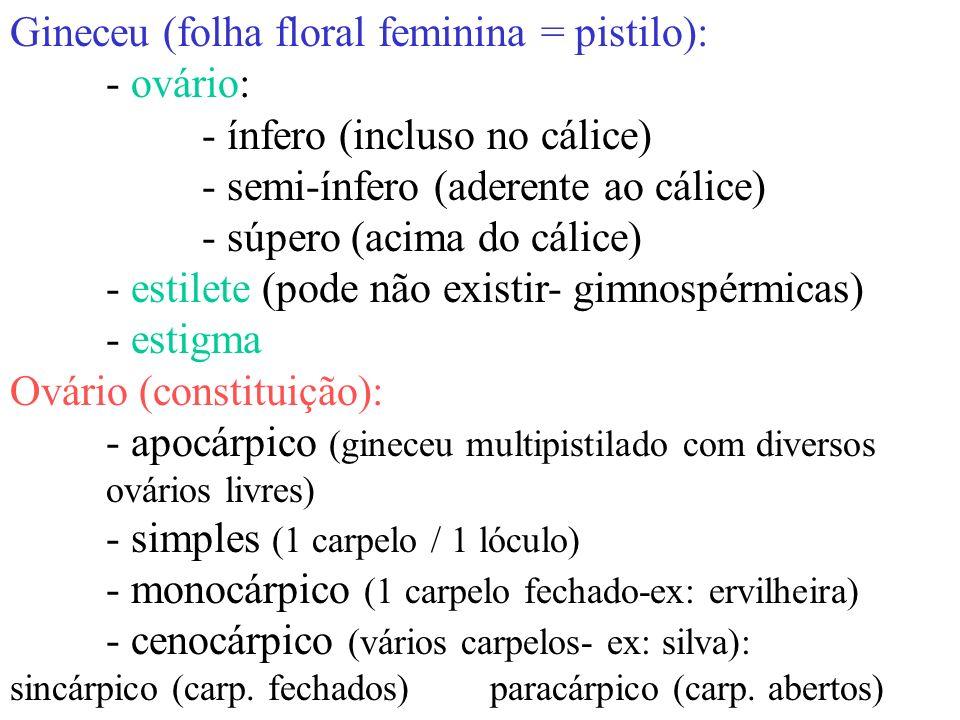 Gineceu (folha floral feminina = pistilo): - ovário: - ínfero (incluso no cálice) - semi-ínfero (aderente ao cálice) - súpero (acima do cálice) - esti
