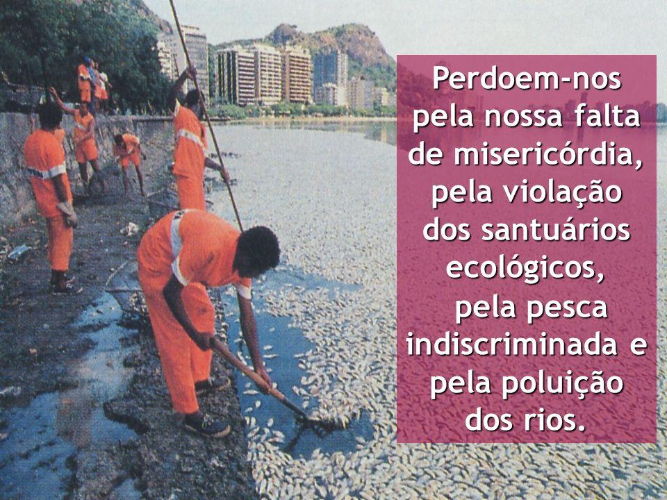 Perdoem-nos pela nossa falta de misericórdia, pela violação dos santuários ecológicos, pela pesca indiscriminada e pela poluição dos rios. pela pesca