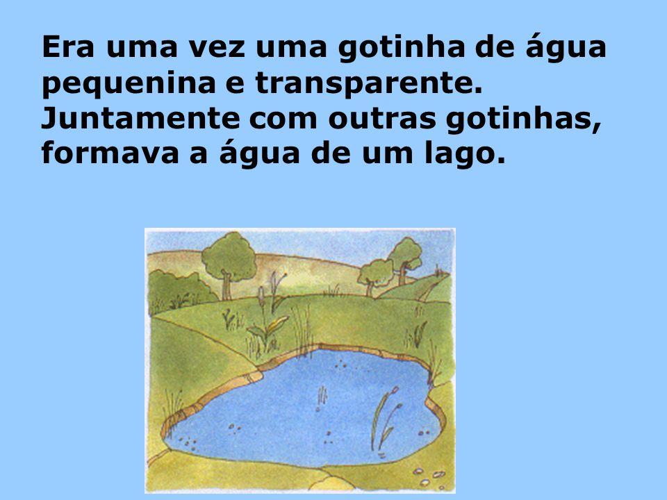 Era uma vez uma gotinha de água pequenina e transparente. Juntamente com outras gotinhas, formava a água de um lago.