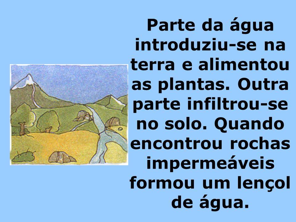 Parte da água introduziu-se na terra e alimentou as plantas. Outra parte infiltrou-se no solo. Quando encontrou rochas impermeáveis formou um lençol d