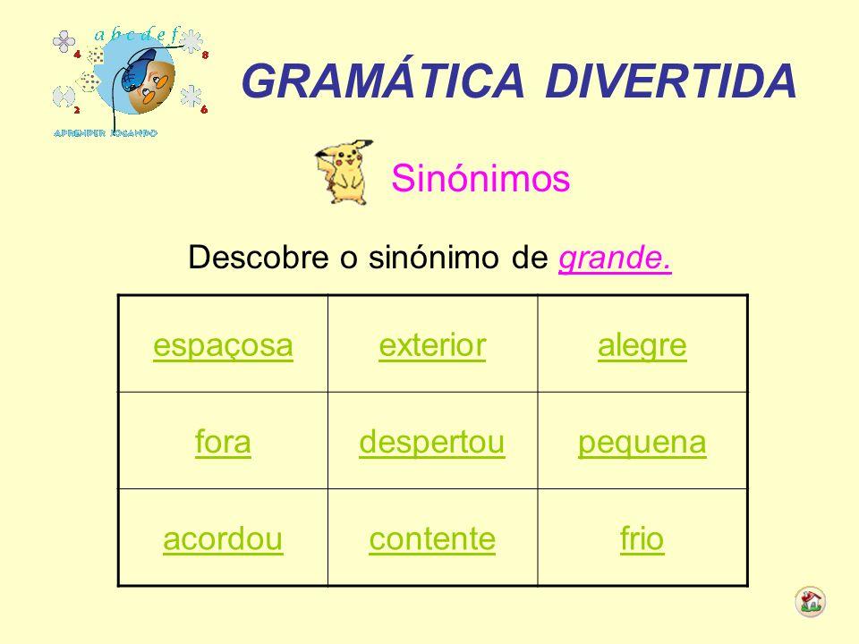 GRAMÁTICA DIVERTIDA Adjectivos Descobre o adjectivo que se encontra no masculino e no singular.