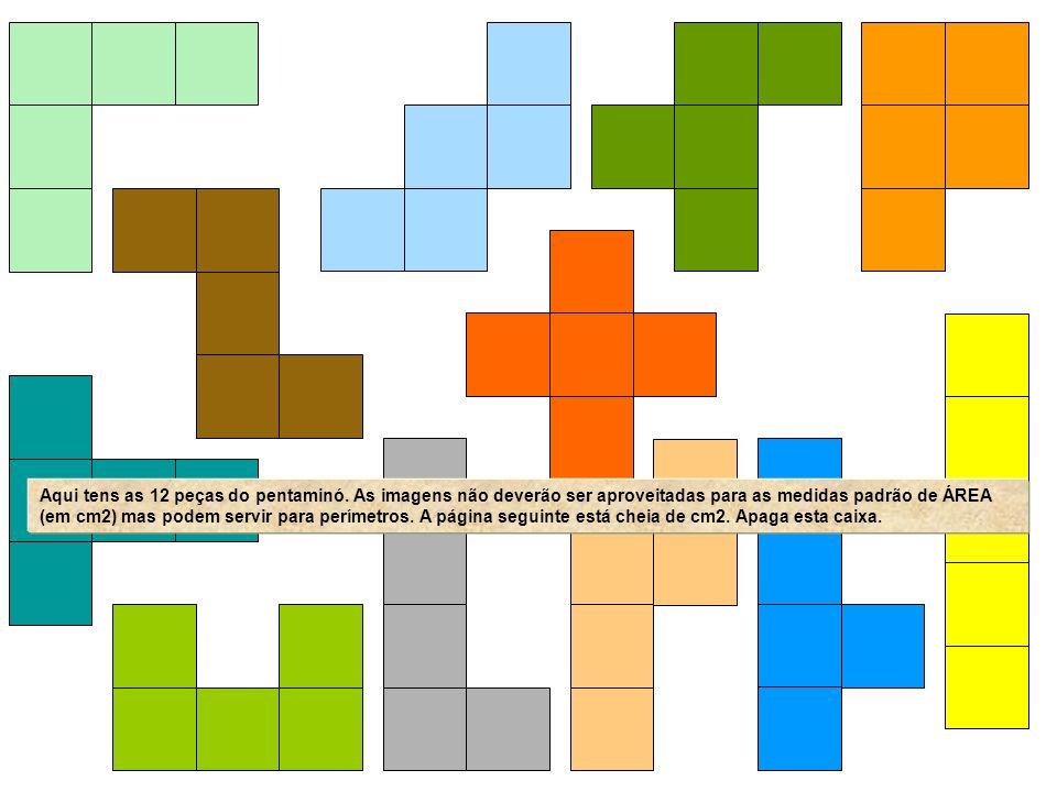 Aqui tens as 12 peças do pentaminó. As imagens não deverão ser aproveitadas para as medidas padrão de ÁREA (em cm2) mas podem servir para perímetros.