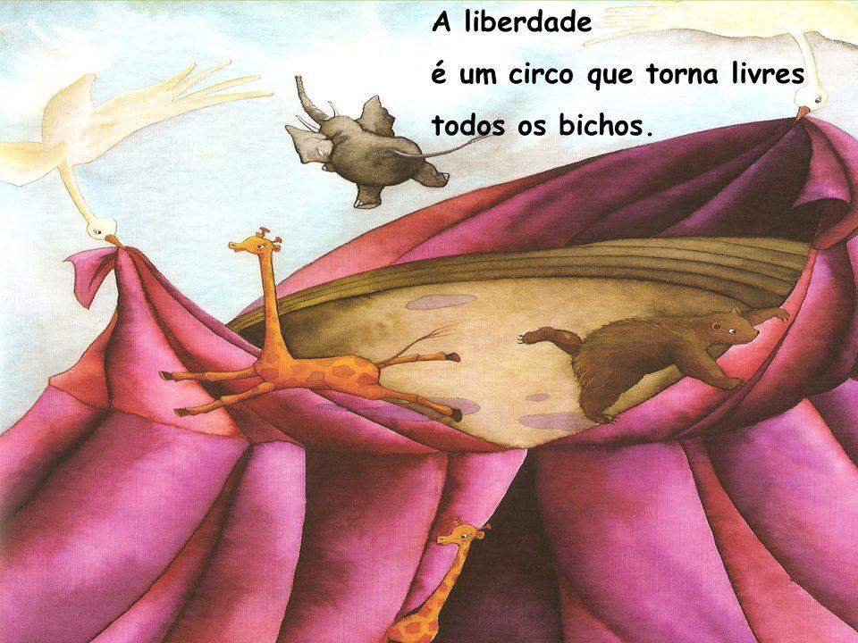 A liberdade é uma rua a desaguar ao luar, no infinito.