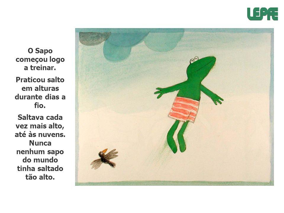 O Sapo começou logo a treinar. Praticou salto em alturas durante dias a fio. Saltava cada vez mais alto, até às nuvens. Nunca nenhum sapo do mundo tin