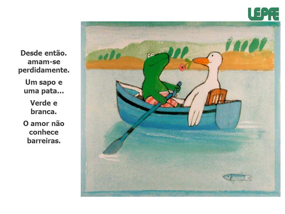 Desde então. amam-se perdidamente. Um sapo e uma pata… Verde e branca. O amor não conhece barreiras.