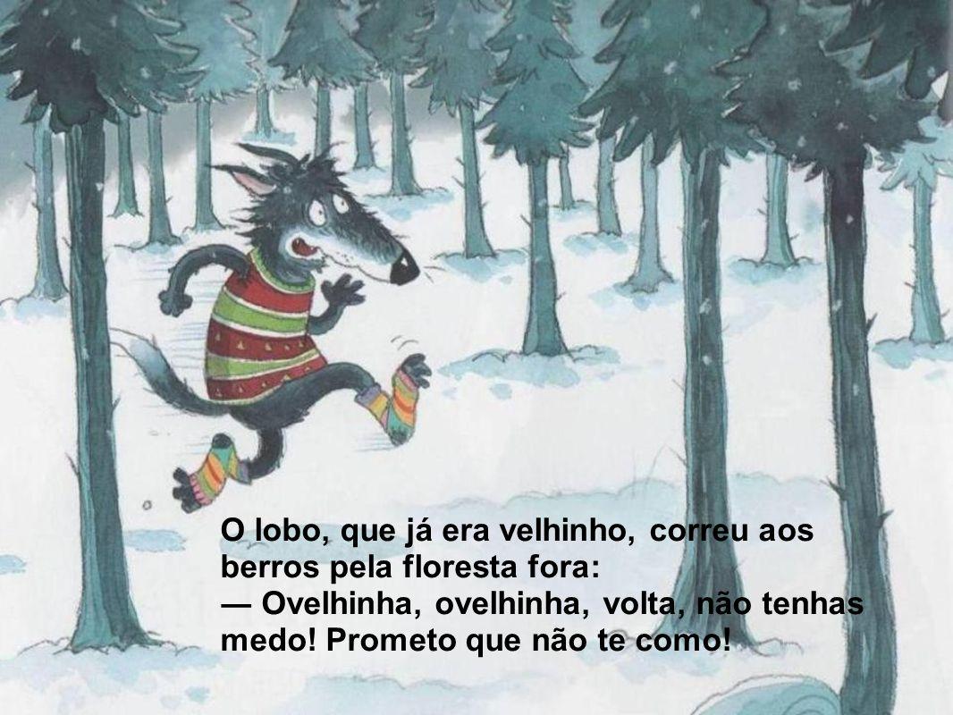 O lobo, que já era velhinho, correu aos berros pela floresta fora: Ovelhinha, ovelhinha, volta, não tenhas medo! Prometo que não te como!