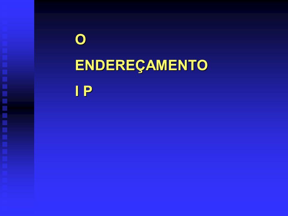 OENDEREÇAMENTO I P