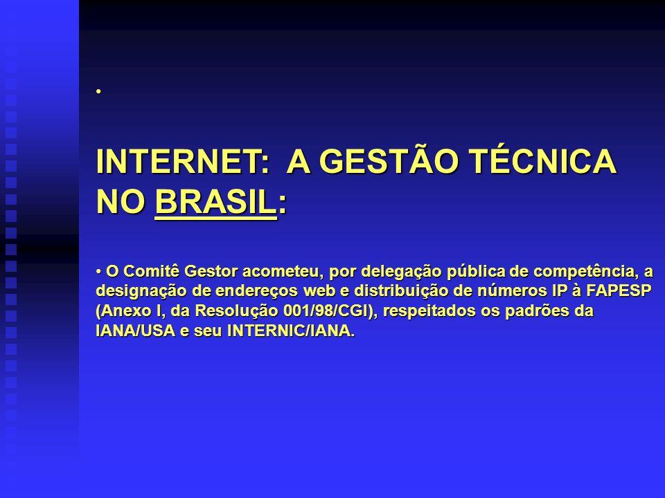 INTERNET: A GESTÃO TÉCNICA NO BRASIL: O Comitê Gestor acometeu, por delegação pública de competência, a designação de endereços web e distribuição de