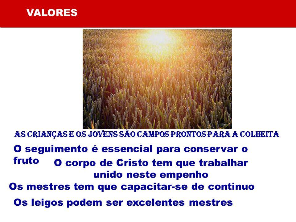 VALORES As crianças e os jovens são campos prontos para a colheita O seguimento é essencial para conservar o fruto O corpo de Cristo tem que trabalhar