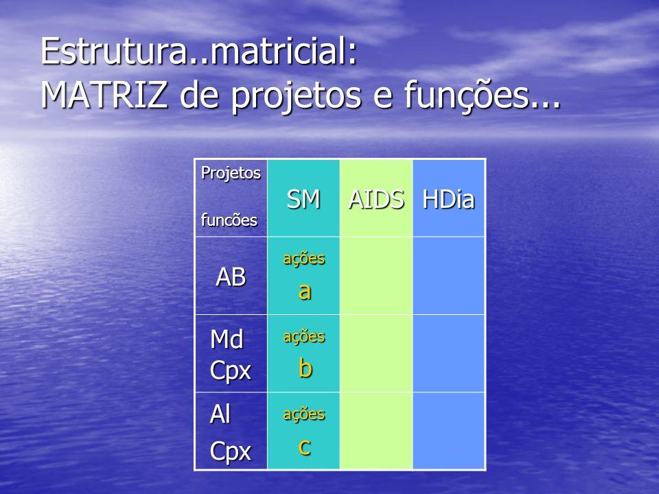 Estrutura..matricial: MATRIZ de projetos e funções... Projetosfuncões SMAIDSHDia ABações a Md Cpx ações b AlCpxações c