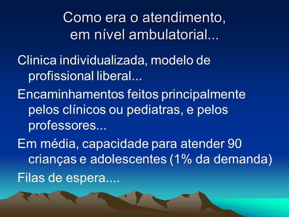 Como era o atendimento, em nível ambulatorial... Clinica individualizada, modelo de profissional liberal... Encaminhamentos feitos principalmente pelo