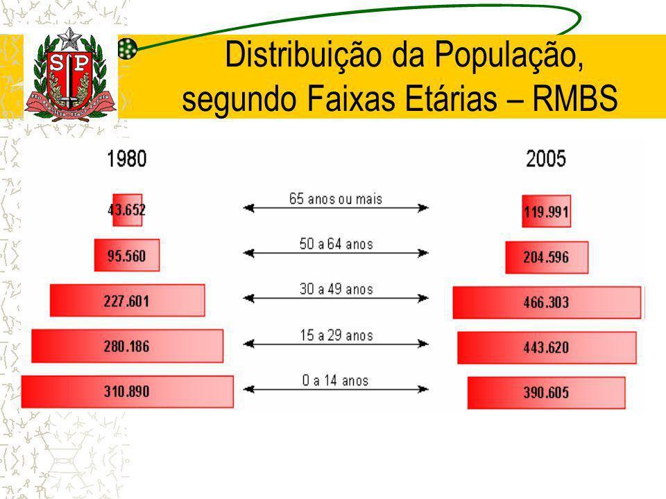 Distribuição da População, segundo Faixas Etárias – RMBS