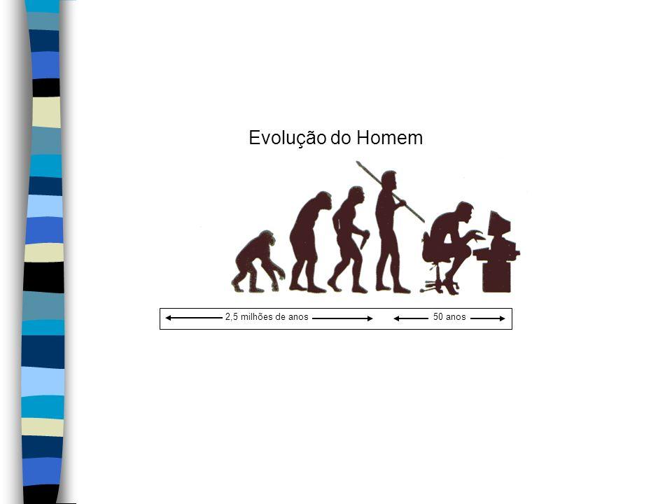 Evolução do Homem 2,5 milhões de anos50 anos