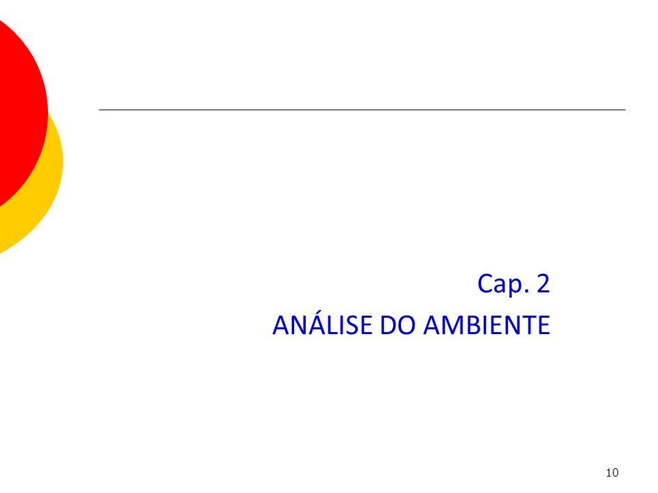 10 Cap. 2 ANÁLISE DO AMBIENTE Capítulo 2