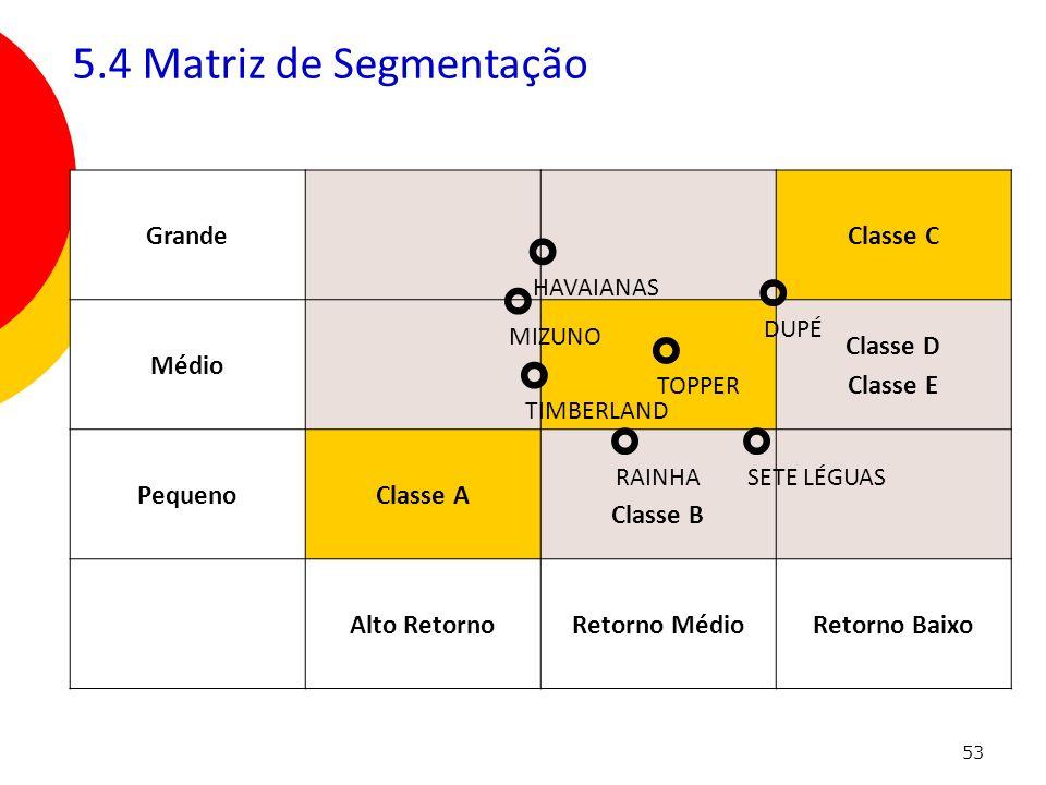 53 GrandeClasse C Médio Classe D Classe E PequenoClasse A Classe B Alto RetornoRetorno MédioRetorno Baixo ° DUPÉ 5.4 Matriz de Segmentação ° HAVAIANAS