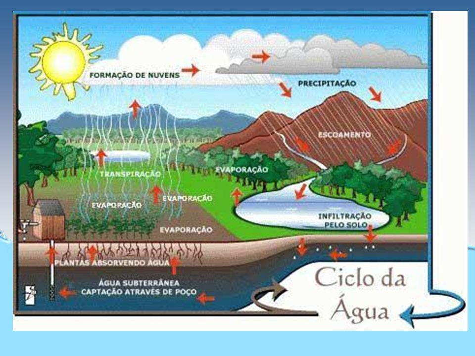 Água – Impacto Ambiental Poluição e conscientização Geóg. Fernando Araújo Nunes Diretor Técnico da SEMMA