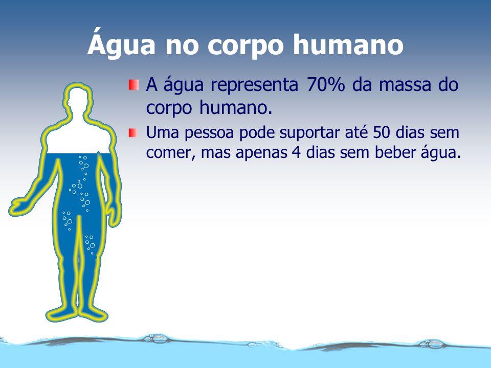 A importância de água para a manutenção da vida Água Impacto Ambiental