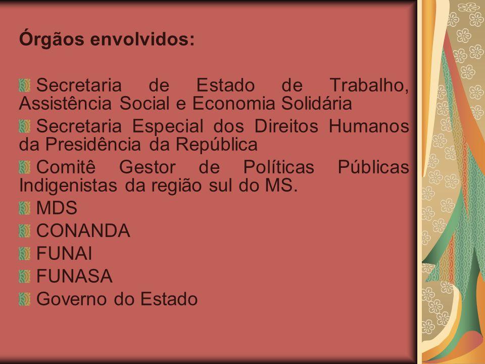 Órgãos envolvidos: Secretaria de Estado de Trabalho, Assistência Social e Economia Solidária Secretaria Especial dos Direitos Humanos da Presidência da República Comitê Gestor de Políticas Públicas Indigenistas da região sul do MS.