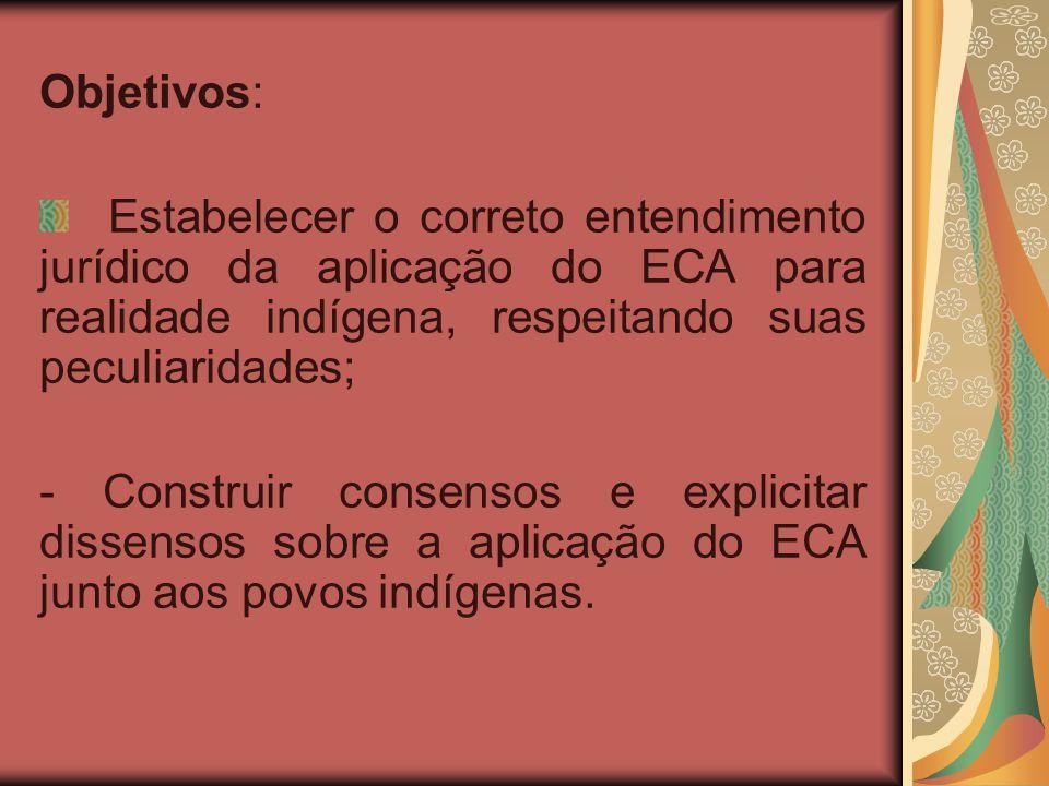 Objetivos: Estabelecer o correto entendimento jurídico da aplicação do ECA para realidade indígena, respeitando suas peculiaridades; - Construir consensos e explicitar dissensos sobre a aplicação do ECA junto aos povos indígenas.