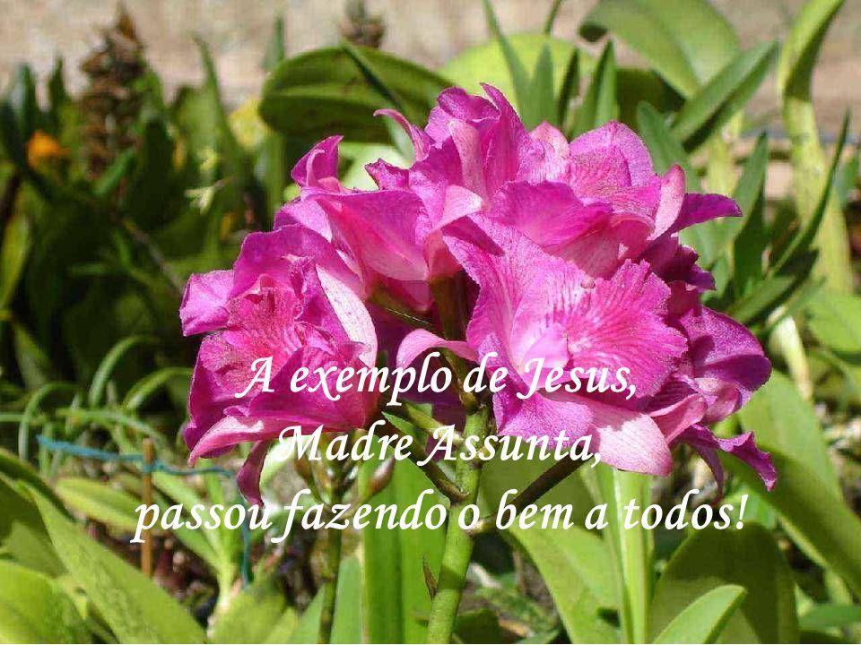 A exemplo de Jesus, Madre Assunta, passou fazendo o bem a todos!