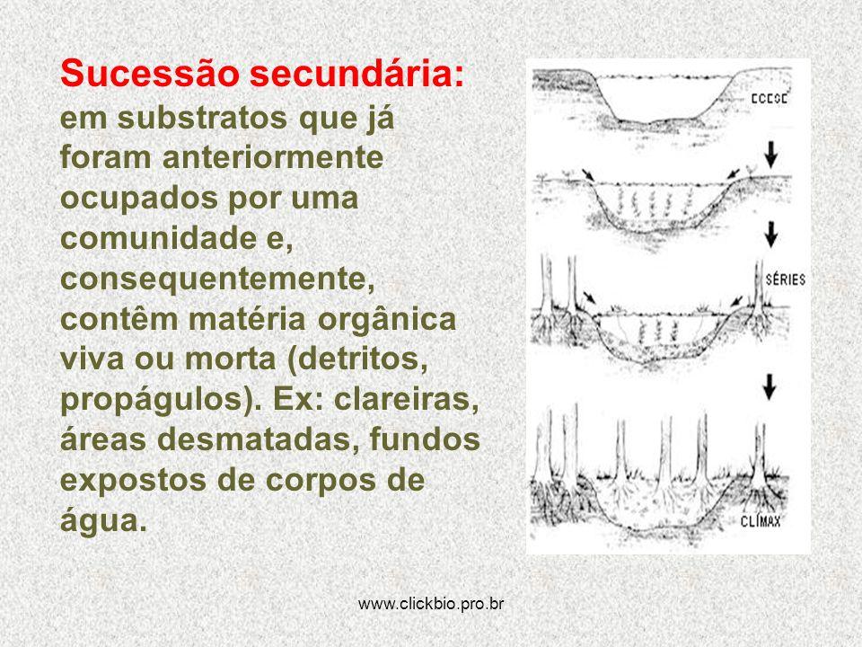 www.clickbio.pro.br Sucessão secundária: em substratos que já foram anteriormente ocupados por uma comunidade e, consequentemente, contêm matéria orgâ