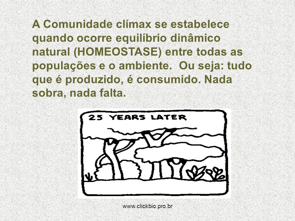 www.clickbio.pro.br A Comunidade clímax se estabelece quando ocorre equilíbrio dinâmico natural (HOMEOSTASE) entre todas as populações e o ambiente. O