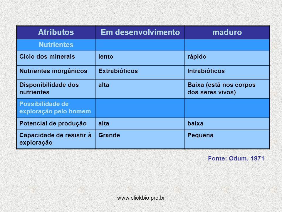 www.clickbio.pro.br AtributosEm desenvolvimentomaduro Nutrientes Ciclo dos mineraislentorápido Nutrientes inorgânicosExtrabióticosIntrabióticos Dispon