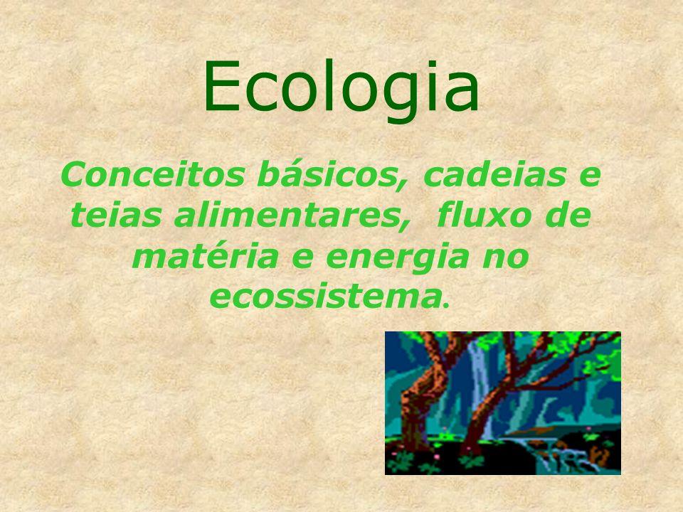 A Terra é um sistema vivo, dispondo de mecanismos de auto-regulação, ou seja, homeostase: mecanismos gerados e regulados pelos processos vitais, que propiciam a manutenção das condições ambientais necessárias à Vida.