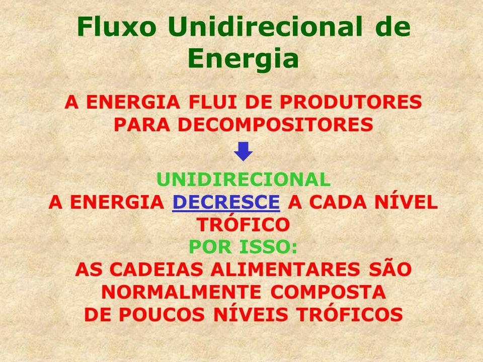 Fluxo Unidirecional de Energia A ENERGIA FLUI DE PRODUTORES PARA DECOMPOSITORES UNIDIRECIONAL A ENERGIA DECRESCE A CADA NÍVEL TRÓFICO POR ISSO: AS CAD