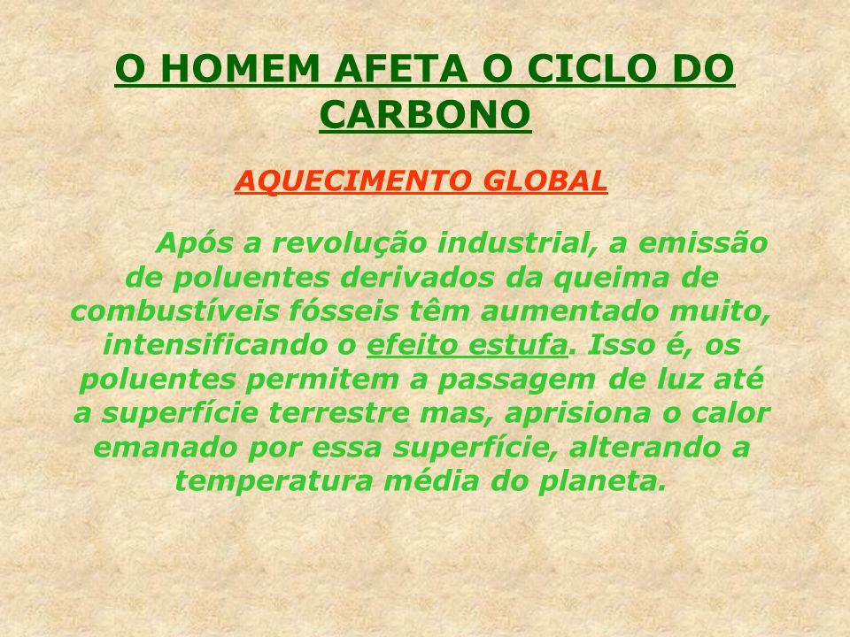 O HOMEM AFETA O CICLO DO CARBONO AQUECIMENTO GLOBAL Após a revolução industrial, a emissão de poluentes derivados da queima de combustíveis fósseis tê
