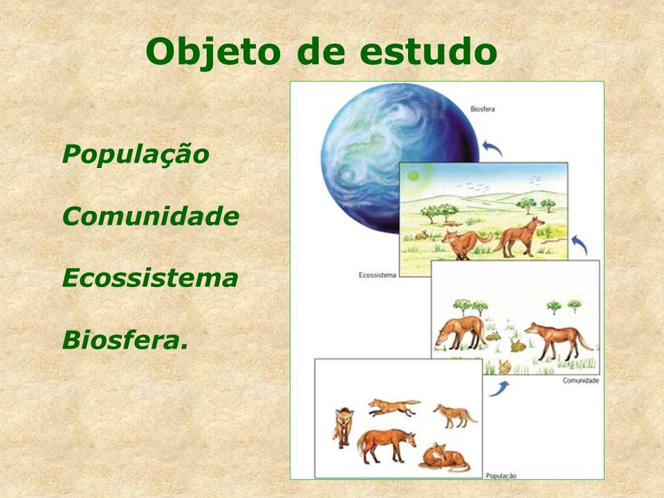 Cadeia alimentar É a maneira de expressar as relações de alimentação entre os organismos de uma comunidade.