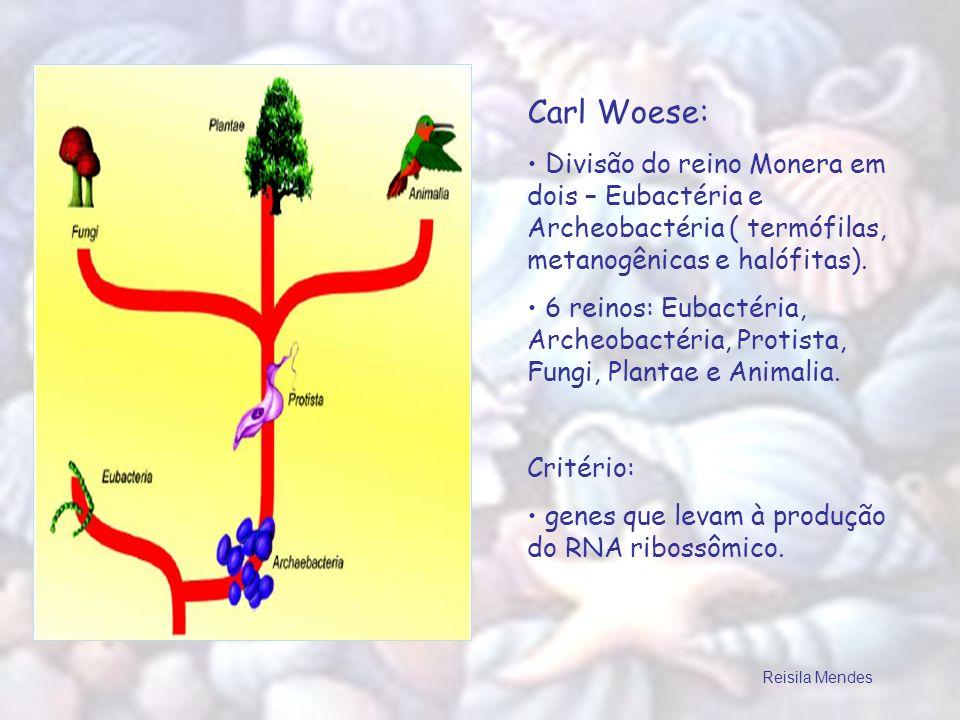 Carl Woese: Divisão do reino Monera em dois – Eubactéria e Archeobactéria ( termófilas, metanogênicas e halófitas). 6 reinos: Eubactéria, Archeobactér