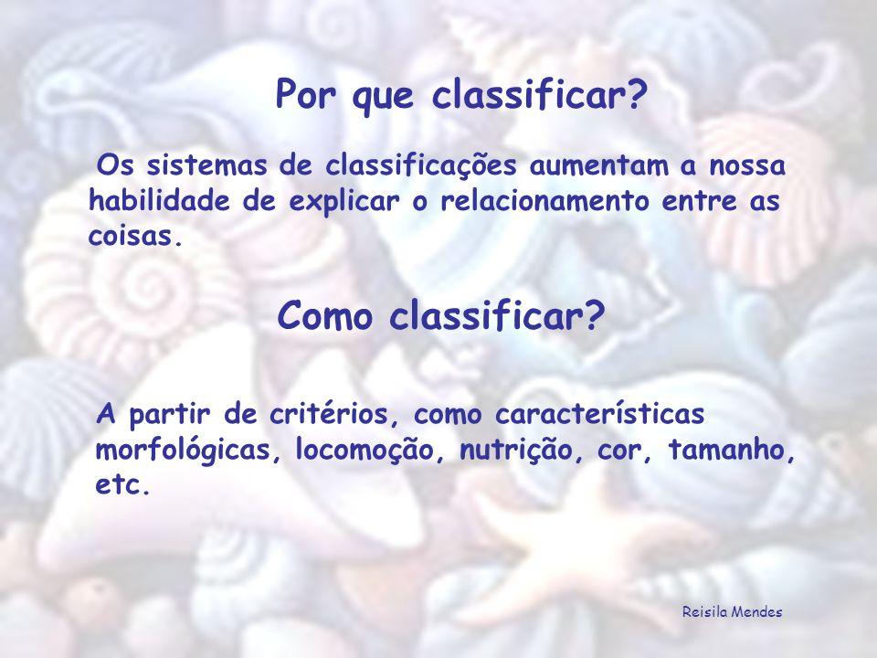 SISTEMÁTICA É o ramo da biologia que estuda os tipos e as variações existentes entre os seres vivos.