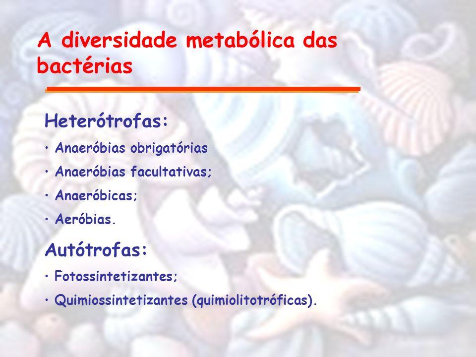 A diversidade metabólica das bactérias Heterótrofas: Anaeróbias obrigatórias Anaeróbias facultativas; Anaeróbicas; Aeróbias. Autótrofas: Fotossintetiz