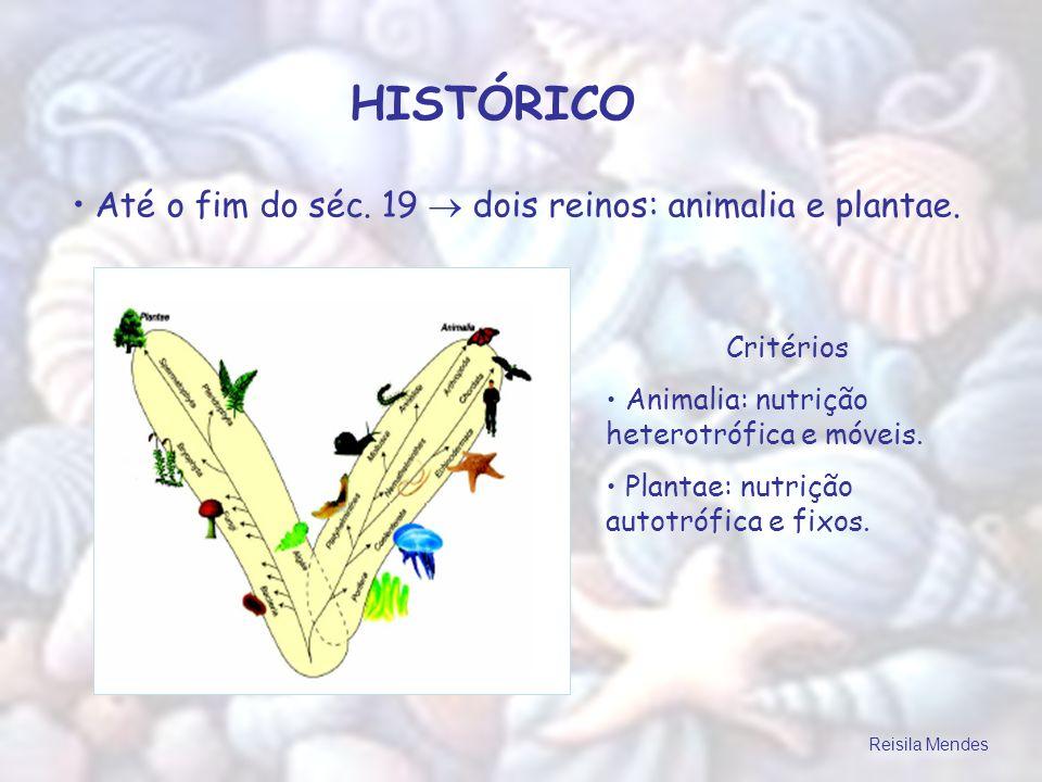 HISTÓRICO Até o fim do séc. 19 dois reinos: animalia e plantae. Critérios Animalia: nutrição heterotrófica e móveis. Plantae: nutrição autotrófica e f