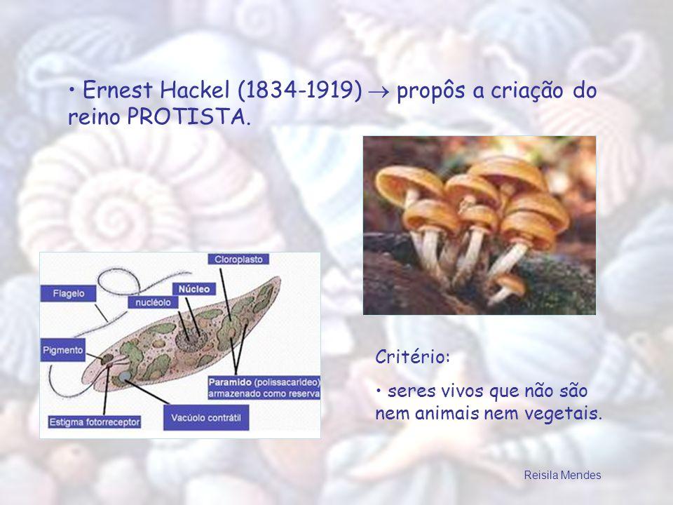 Ernest Hackel (1834-1919) propôs a criação do reino PROTISTA. Critério: seres vivos que não são nem animais nem vegetais. Reisila Mendes