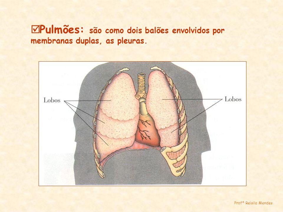 Pulmões: são como dois balões envolvidos por membranas duplas, as pleuras. Profª Reisila Mendes